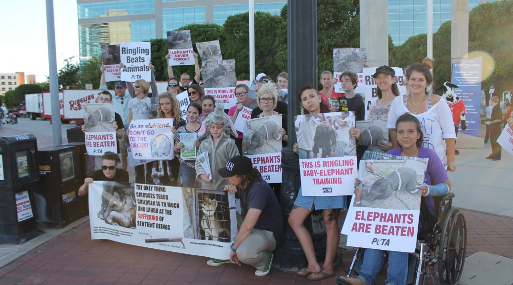 Numerous activists hold signs at Ringling Circus Protest Downtown Salt Lake City
