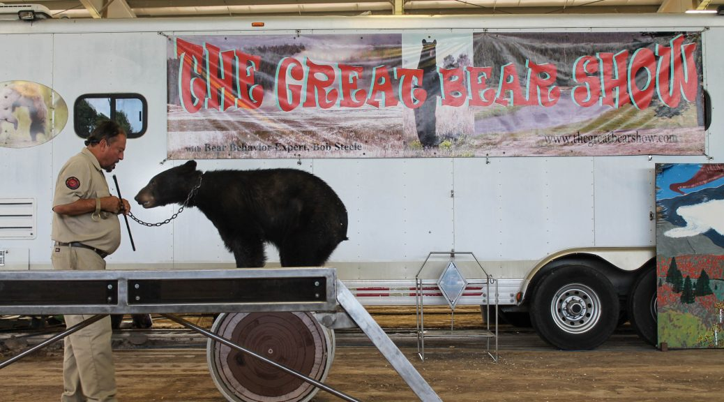 the great bear show animal cruelty