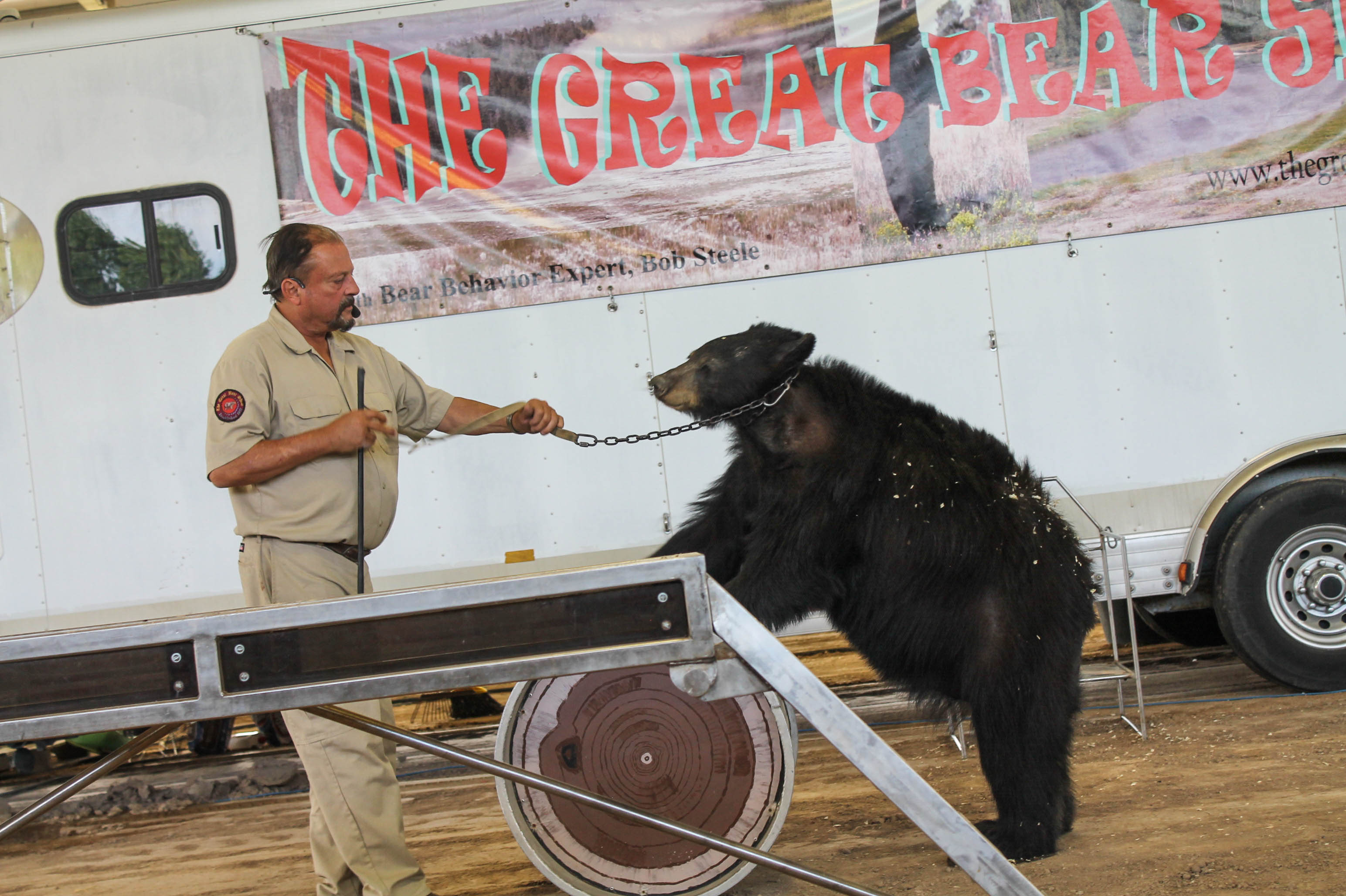 Great Bear Show