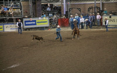 UARC Documents & Protests Cruelty at Days of '47 Rodeo